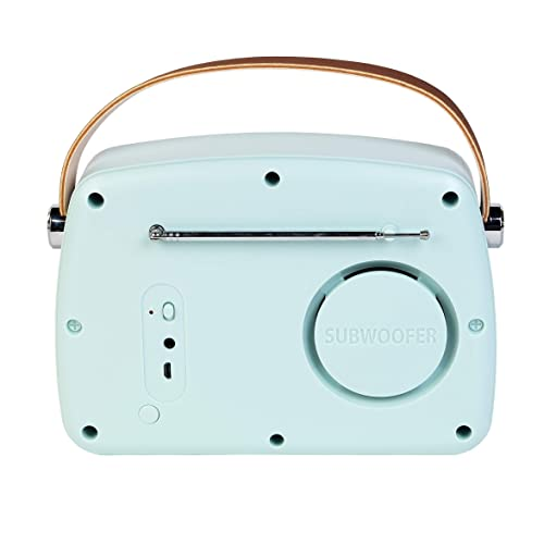 Intempo EE3332BLUSTKEU Bluetooth Speaker with FM Radio and Leather Carry Strap