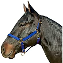 Intrepid International Padded No Rub Striped Horse Halter