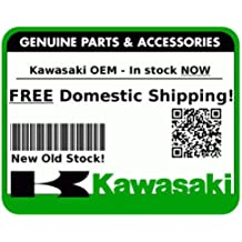 Use with Kawasaki KVF650 Brute Force 650 4x4 ATV Rear Differential 2005-2010 Big Bearing ATVKD-38 2925 Kawasaki KVF650 Brute Force 650 4x4 ATV Rear Differential Bearing Kit Metal//Rubber