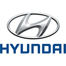 Genuine Hyundai 31430-2H500 Canister Close Valve