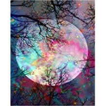 Acrylic Paint by Number Kit On Canvas for Adults Beginner Rainbow Owl 16X20 Inch
