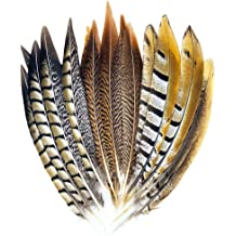 20-30cm MWOOT 15pcs Natural Pheasant Feather 3 Styles Crafts DIY Tails Feather for Hair Hats Home Wedding Party Decoration