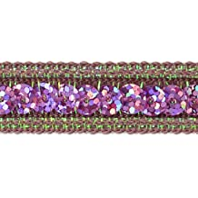 20-Yard Expo International Single Row Sequin with Sparkle Edge Trim Silver