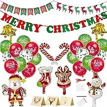 Naiwoxi Christmas Party Supplies Decorations Indoor 65 Pcs Xmas Party Decorati